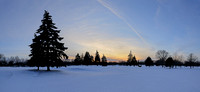 Winter spruce landscape (HDR and Panoramic)