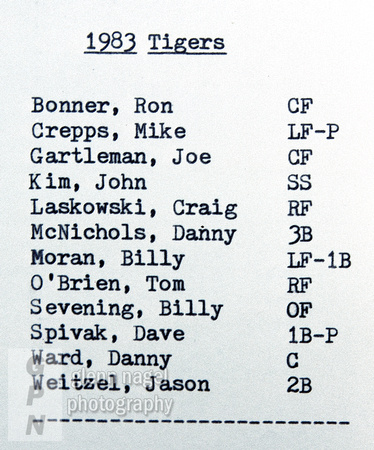 Tigers' roster